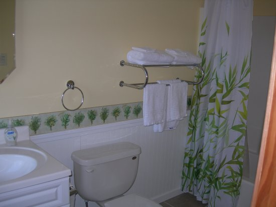 Cheboygan, MI: Guest bathroom