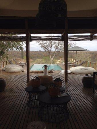 Timbavati Private Nature Reserve, Güney Afrika: Piscina