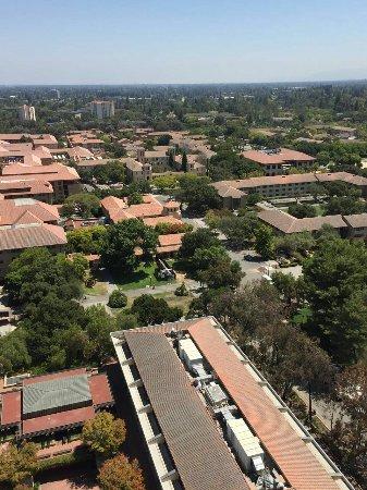 Palo Alto, CA: IMG-20160811-WA0009_large.jpg