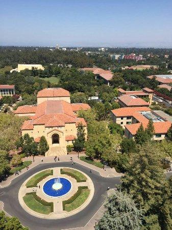 Palo Alto, CA: IMG-20160811-WA0008_large.jpg
