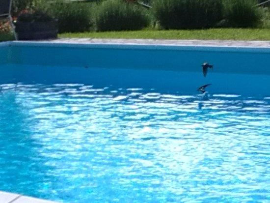 Arcidosso, Italia: Il bagno serale