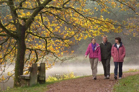 Ross-on-Wye, UK: Walking, cycling, canoeing, mountain biking the choice is yours...