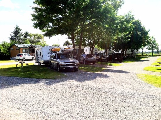 Spokane Valley, WA: Shady, green grass pull-thru RV sites