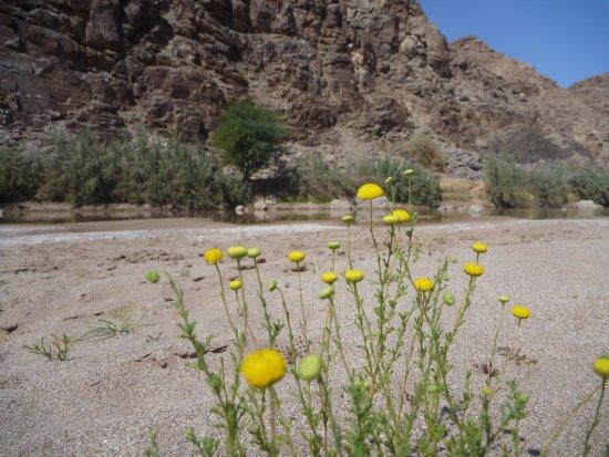 Фиш-Ривер-Каньон, Намибия: schöne Wanderziele in der Umgebung