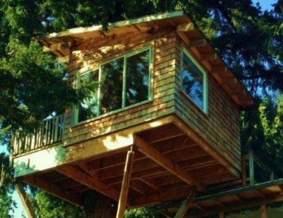 Woodinville, WA: view of tree house