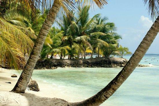 La Romana Province, Den dominikanske republikk: DSC05152_large.jpg