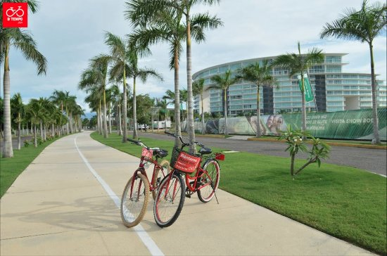 B Tempo Bikes