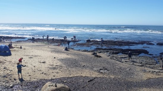 Moss Beach, Californien: Tide pool