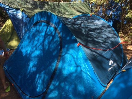 Camping Lacona Pineta: photo0.jpg