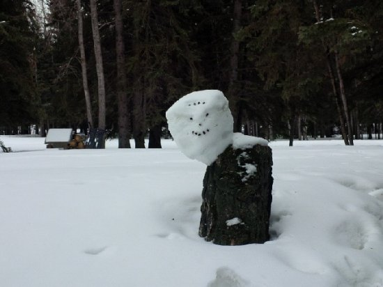 Red Deer, Canadá: Having fun during the winter