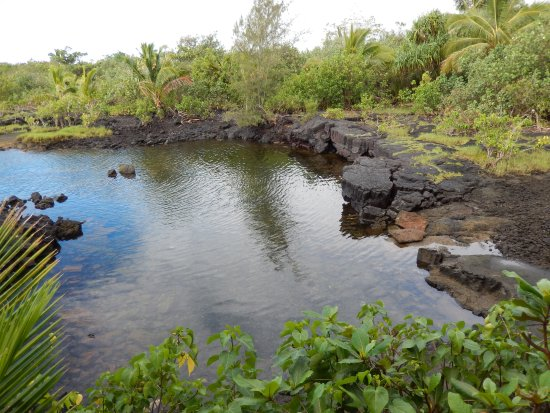 Pahoa, Hawái: End of Kopoho Tide Pools - a great place to enter for snorkeling