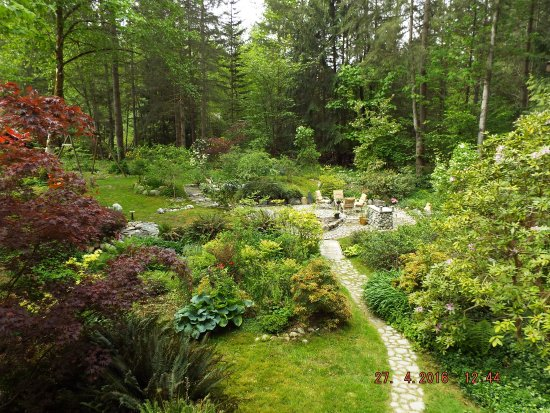 Maple Ridge, Canadá: View from guest patio