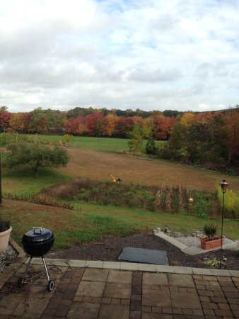 Bozrah, CT: Fall foliage from the patio