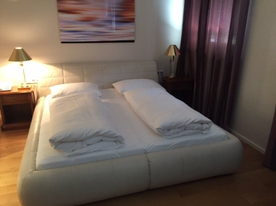 Hotel Wolf-Dietrich: Standard double room