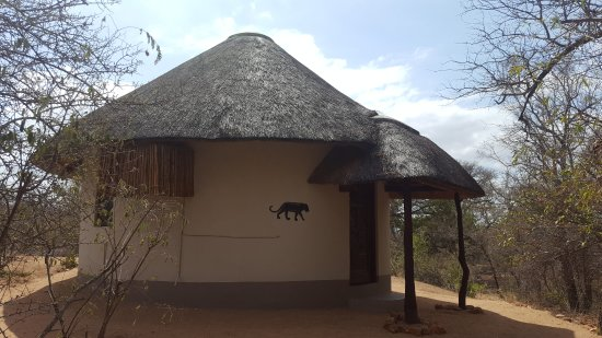 Obraz Balule Private Game Reserve