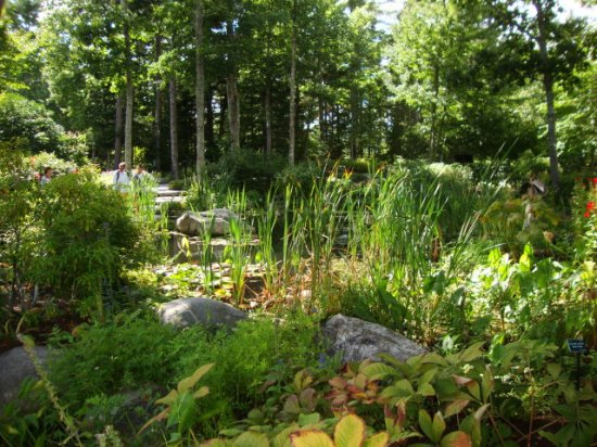 Boothbay, ME: Lovely paths to walk