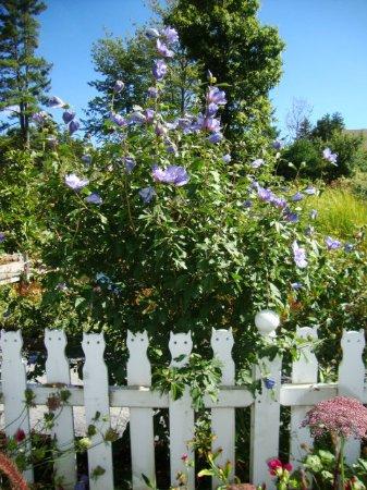 Boothbay, ME: The Children's Garden is delightful
