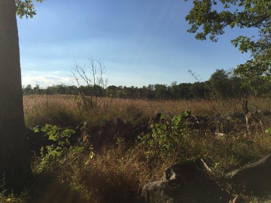 Gettysburg militære nasjonalpark: The Gettysburg battlefield.