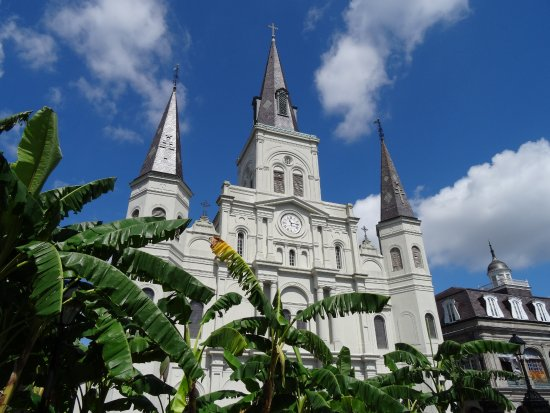 St. Louis Cathedral-bild