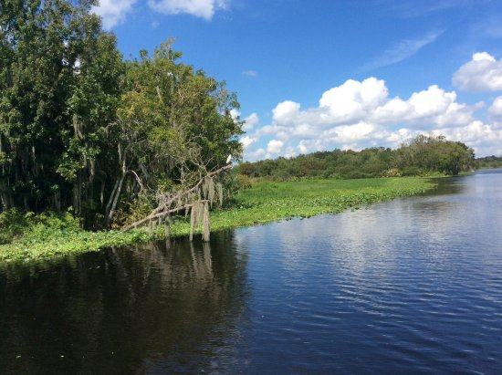 ДеЛанд, Флорида: St. John's River tour