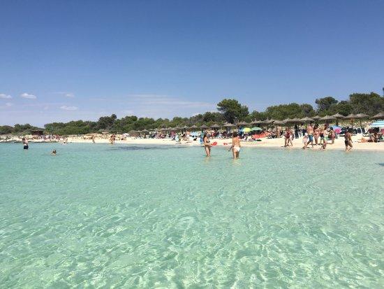 es carbò beach - Foto di Platja des Carbo, Colonia de Sant Jordi - TripA...