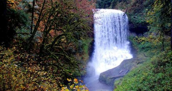 McMinnville, OR: Waterfall Tour