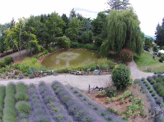 McMinnville, OR: Garden Tours
