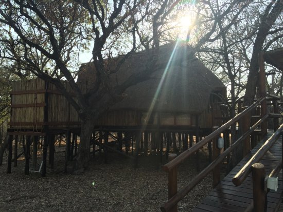 Pezulu Tree House Game Lodge: photo0.jpg