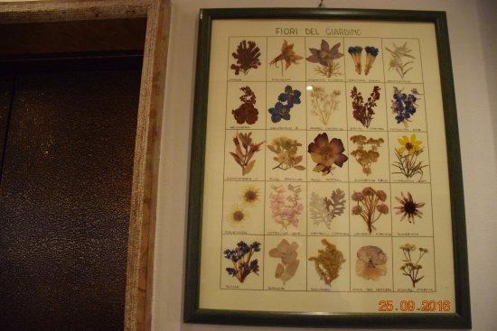 Monclassico, إيطاليا: Simpatico quadro con fiori secchi del giardino
