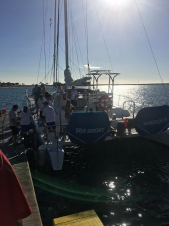Ocean Sports Sunset Champagne Sail: photo5.jpg