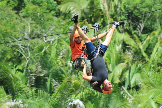 GO GAY! Jungle Adventure: upside down...what? by far the scariest cable line