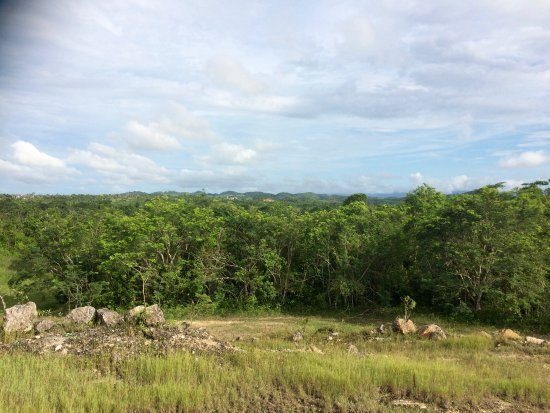 Belmopan, Belice: View from the hilltop on the property