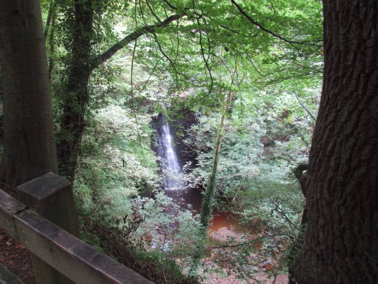 Falling Foss Tea Garden and Waterfall: Falling Foss is an enchanting special place, I would highly recommend a visit