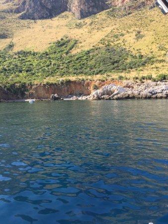 Hippocampus Sea Services: photo3.jpg