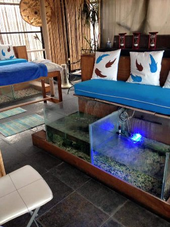 Aguas Rufas Fish & Spa