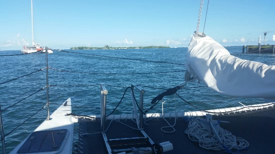 Catamaran Echo: 20160918_090816_large.jpg