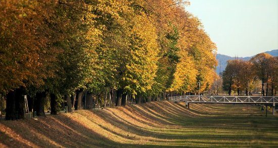 Image result for late summer early fall