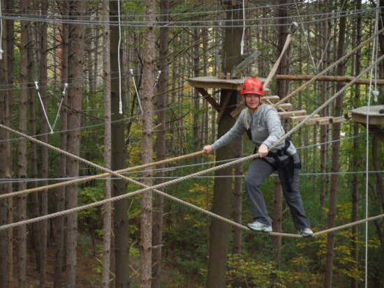 Lake Geneva, WI: Rope Walk on the High Ropes Excursion