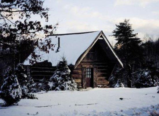 Mount Nebo, Virginia Occidentale: McKinley's Cabin | westvirginiacabins.com