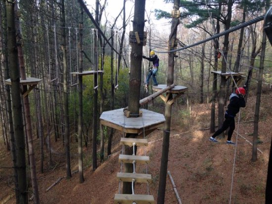 Lake Geneva, WI: 16 obsticles on the High Ropes Excursion