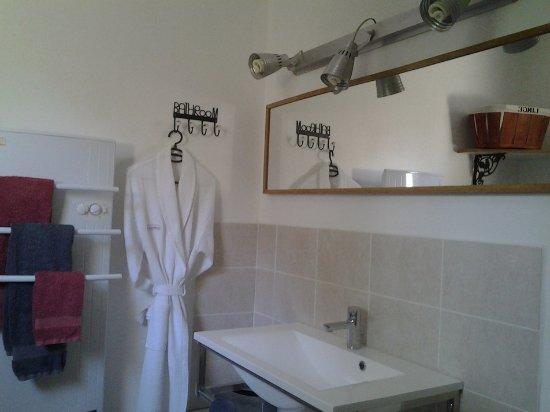 Saint-Paul-Trois-Chateaux, Frankrike: Salle de bains lesrouvieres.fr