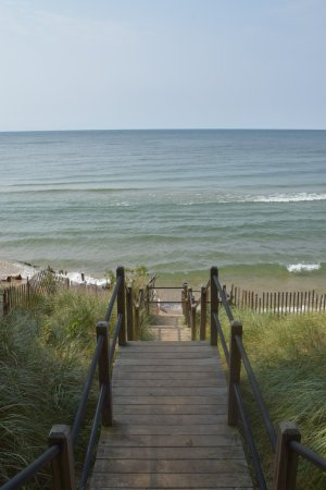West Olive, MI: Stair case down to the dog beach - maybe forty or so steps