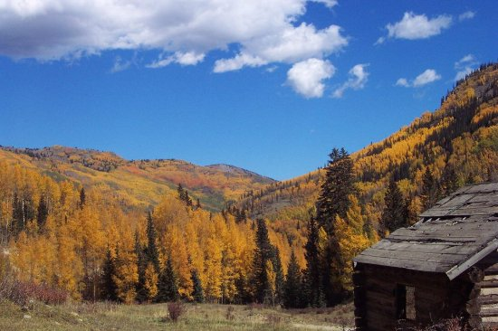 South Fork, CO: Fall colors