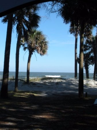 Hunting Island State Park Campground : View from Tent!