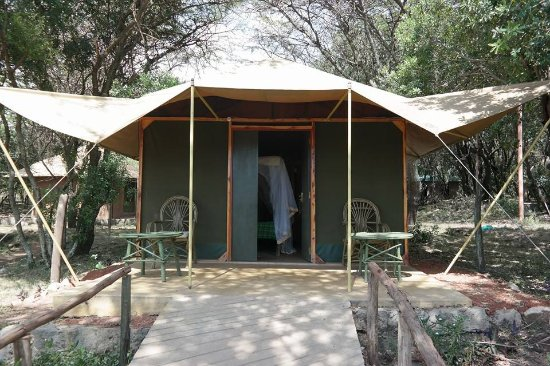 Mara Springs Safari Camp Picture