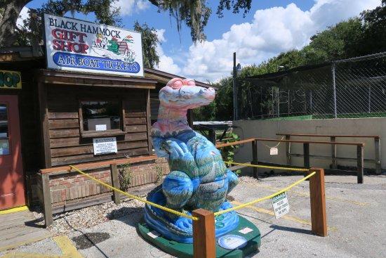 Oviedo, FL: Yeh, gators are multi colored.