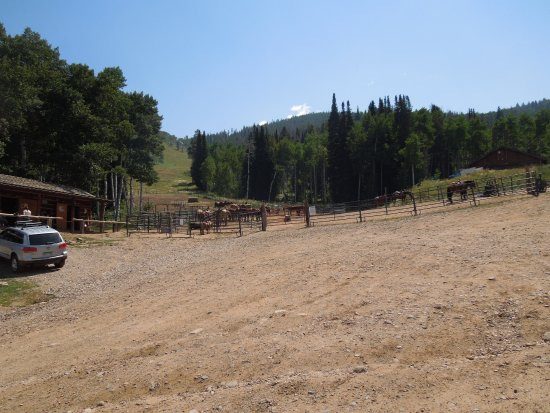 Beaver Creek, CO: Horse back rides