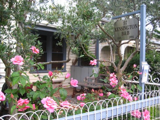 Kensington B&B: Spring roses in bloom