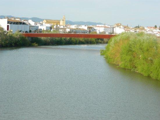 Puente De Miraflores