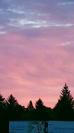 Hampton Inn Idaho Falls/Airport: Good morning from the Hampton! ALWAYS BEAUTIFUL @ the Airport location